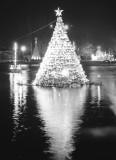 Simcoe - Downtown Xmas Tree