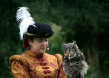 September 11 2010: Tudor Falconry