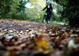 November 17 2010: Girl cycling