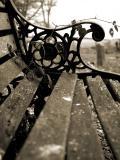 February 27 2006:  Churchyard Bench
