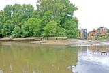 Isleworth Ait, downstream end.
