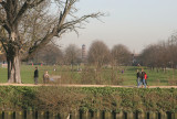 The Pagoda in Kew gardens.
