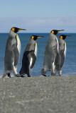 St.Andrews Bay