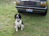 Buddy by my car
