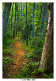 foothills_trail09