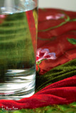 Indulgence: Colour, Light and Water