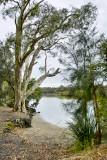 Sunshine Coast Queensland - 2010