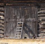 Keeping the barn door closed