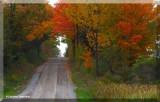 Back roads of Ontario