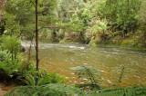 Hellyer River