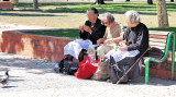 Picnic of the Typical Old Ladies, with Pigeon Watching...