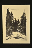 hemlock trail  (Lithograph) 28 x 19