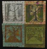 tree sees many seasons.JPG