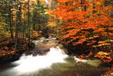 New England Creek