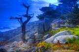 Coastal Treasures