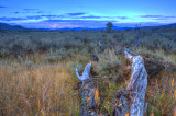 Wyoming Backroad