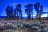 Jackson Outback