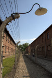 Auschwitz contd.
