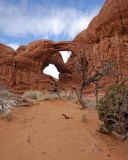 arches_2008