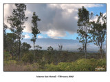 mauna kea landscape 2