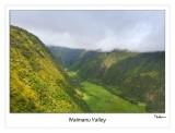 waimanu valley (looking in)
