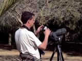 Arne digiscooping- Little Green Bee-eater