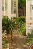 glass house in walled garden