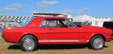 Mustang at Daytona