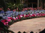Springtime at Callaway Gardens