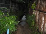 Dark and muddy path