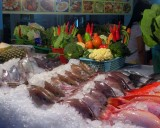 Fish on ice - which do you want?