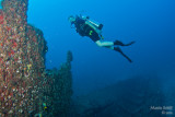 Nina on the wreck of the Castor