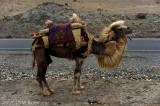 Sights on the Karakoram Highway