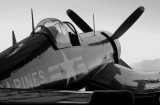 Chance-Vought F4U-4 Corsair - Gray Scale
