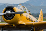 1941 North American T6-G Texan