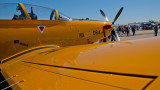 T-6 Texan II - Centennial Colors