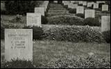 Danes resting in French Soil