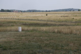 2.  The fields leading to Cemetary Ridge.