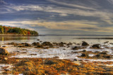 MAINE'S MOUNT DESERT ISLAND AND ACADIA NATIONAL PARK