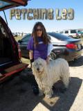 Fetching Leo