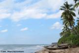 Tropical sceneries at the Tanzanian coast