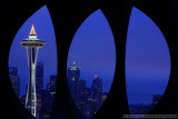 Seattle at Night from Queen Anne Hill