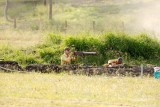 Emu Gully - 2009 - Candids_0038.jpg