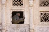 Monkey, Pushkar