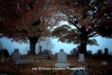 Vestal Ave Cemetery_HDR2.jpg