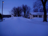 Part of front yard. (2/2/11)