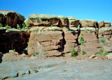 Canyonlands View Four