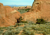 A View in Arches