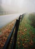Bench Lane in Fog