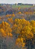 W.V. Landscape